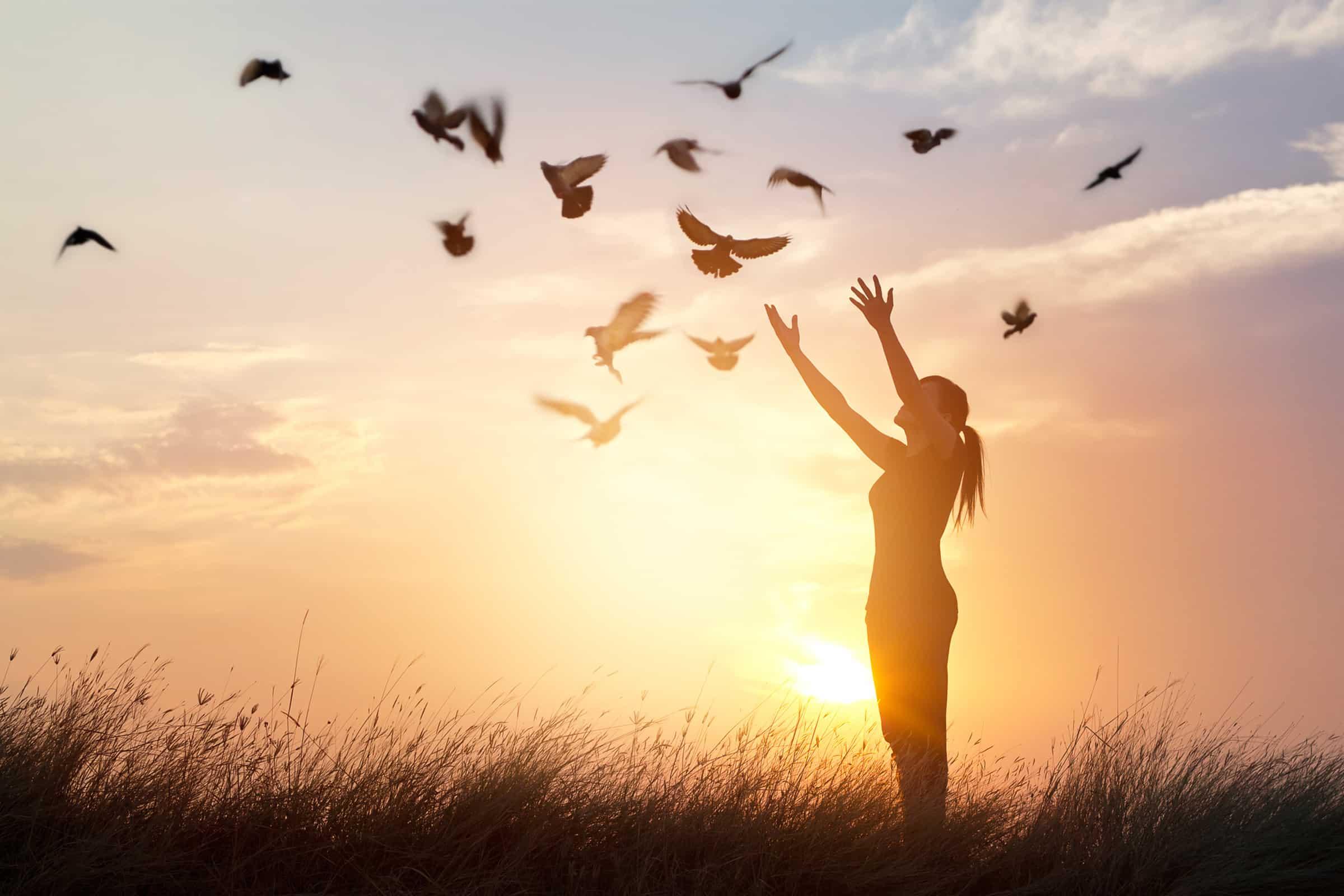Pszichológus vagy pszichiáter – Kihez forduljunk segítségért és mikor?